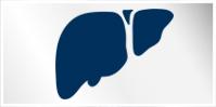 Modern liver surgery